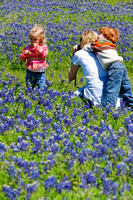 Family Pictures with Bluebonnets