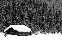 Winter Scene, Lake Louise (B&W)